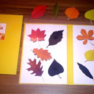 STÍNY podzimní listy